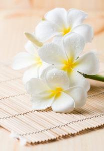 formation massage lomilomi par ecole des spas et instituts